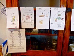 Watercolor drawings of food plating
